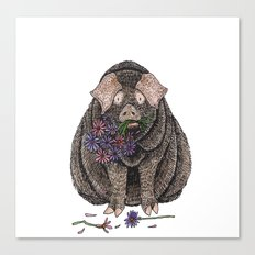 Pig with Flowers Canvas Print