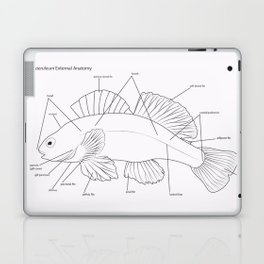 Anatomy of a Darter Laptop & iPad Skin