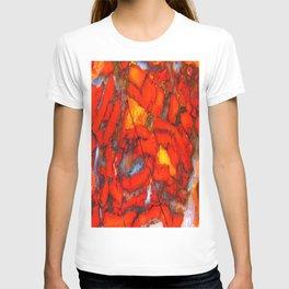 Lavic Jasper  T-shirt