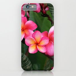Hawaiian Sunrise Plumeria iPhone Case