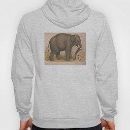 Vintage Elephant Illustration (1874) Hoody