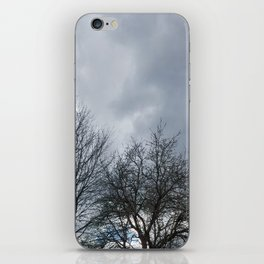 Winter Sky, Cloudy Winter Sky, Beautiful Clouds and Trees iPhone Skin