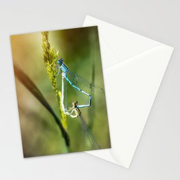 Two Dragonfly insect mating perched on stem of weed Stationery Cards