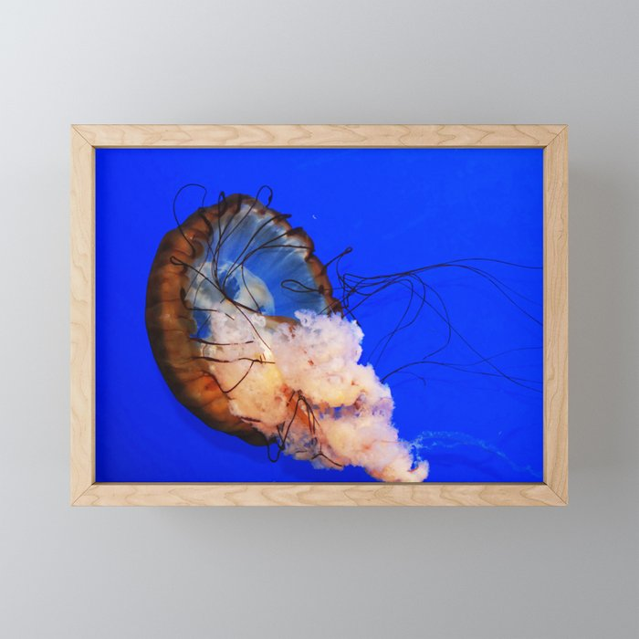 Underwater Life Framed Mini Art Print