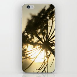 Lace Silhouette iPhone Skin