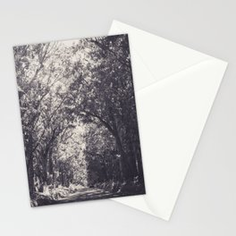 Tunnel of Trees - Kauai, Hawaii Stationery Cards