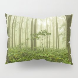 Dreaming of Appalachia - Nature Photography Digital Landscape Pillow Sham