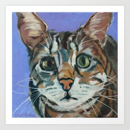 Green Eyed Cat Portrait Art Print