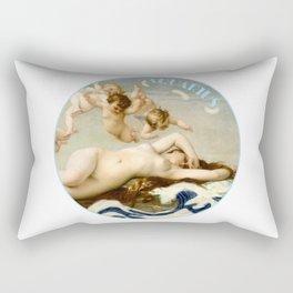 Zodiac art: aquarius Rectangular Pillow