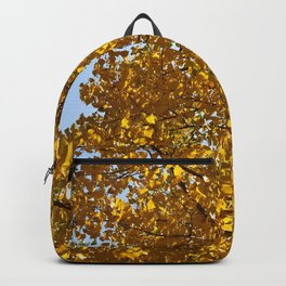 Golden Colorado Afternoon Backpack