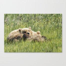 Counting Salmon - Bear Cubs, No. 3 Canvas Print