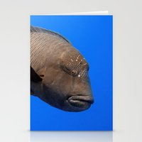 napoleon Stationery Cards featuring Napoleon Wrasse by Serenity Photography