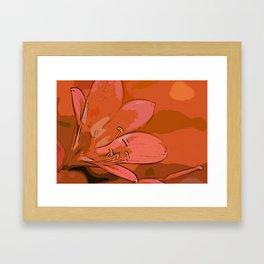 Clivia Miniata Framed Art Print