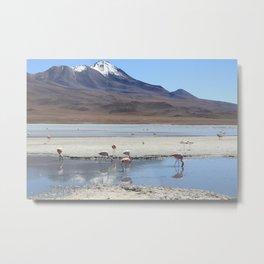 Flamingo lagoon Metal Print