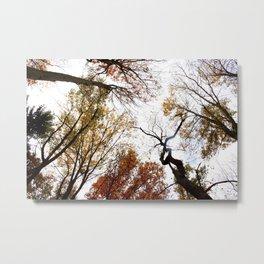 fall in Metal Print