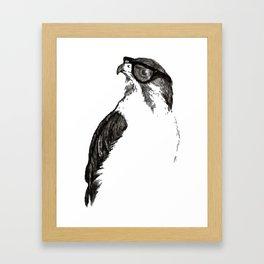 Far Sight Framed Art Print