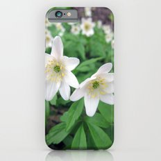 Fresh in White Slim Case iPhone 6s