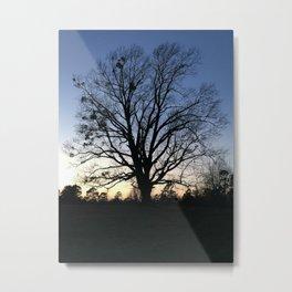 arkansas spring at sunset Metal Print