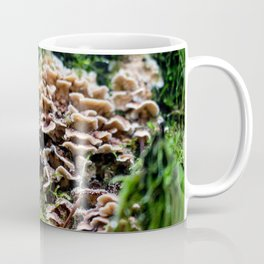 Mushroom in the Wild Coffee Mug