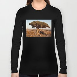 Socotra — dreams of the Lost Paradise Long Sleeve T-shirt