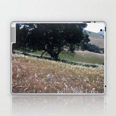 California Live Oak Laptop & iPad Skin