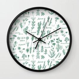 Aromatic herbs Wall Clock