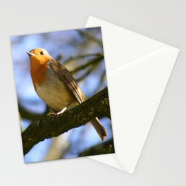 Little Robin Redbreast Stationery Cards