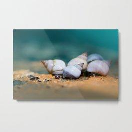 Herd of Shells Metal Print