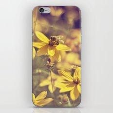 Summer  Bee iPhone & iPod Skin
