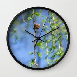 Young larch - Nature photography Wall Clock