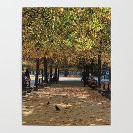 Fall Colors of Places des Vosges Poster