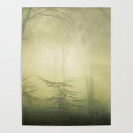forest awakening - foggy forest scenery Poster