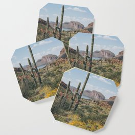 Arizona Spring Coaster