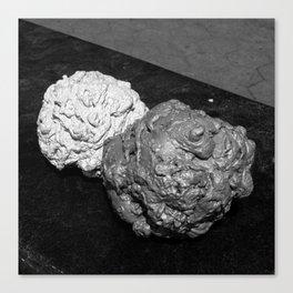 Concrete Blobs Canvas Print
