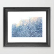 Winter Dreams Framed Art Print
