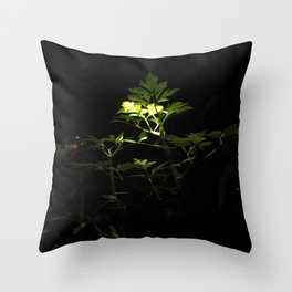 Nighttime in the Garden, 3 Throw Pillow