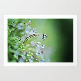 When you hear the fairies sing, you'll know you found my secret hiding place... Art Print