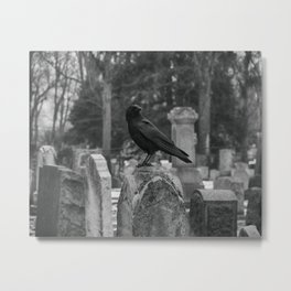 Crow In Shades Of Stone Metal Print
