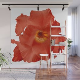 Sword Flower Red Yellow Wall Mural