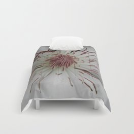White Clematis Comforters