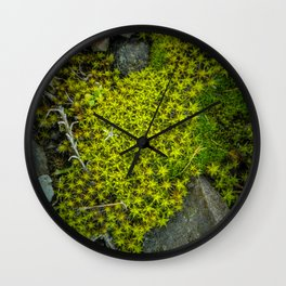 The tiny green forest Wall Clock