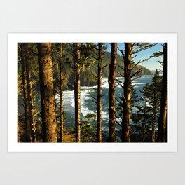 View through the treesH Art Print