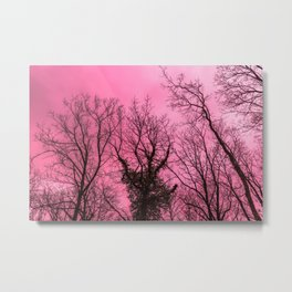 Scary naked trees, pink sky Metal Print