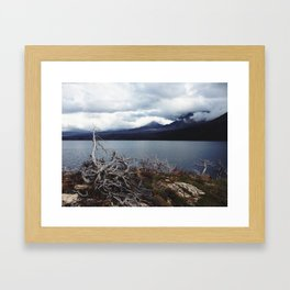 Forgotten Limbs Framed Art Print