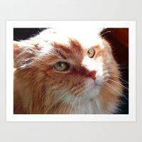 tigger Art Prints featuring Tigger by ACamp