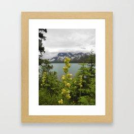 LAKESIDE BEAUTY Framed Art Print