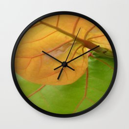 Sea Grape Leaves Wall Clock