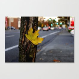 Single Leaf Canvas Print