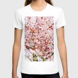 Cherry Blossom Tree (Color) T-shirt
