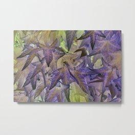 abstract maple leaf in summer season Metal Print